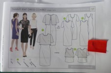 Style Arc dress pattern